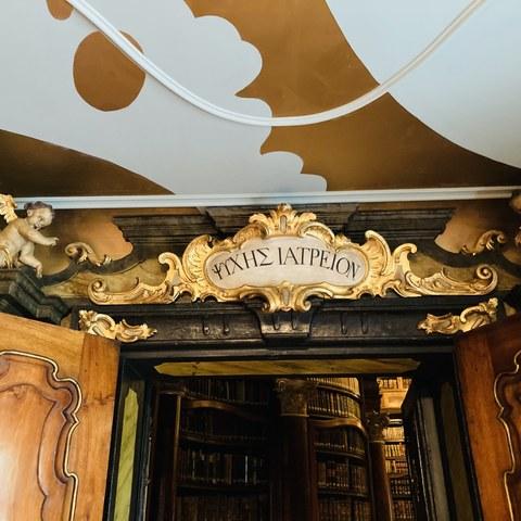 Stiftsbibliothek. Vergrösserte Ansicht